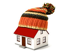 House wearing a woolly hat